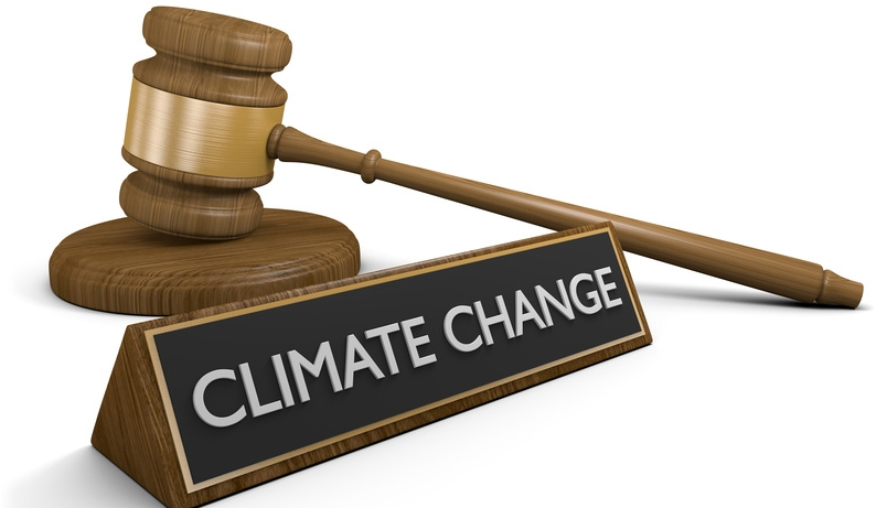 courts and and protection of the environment from climate change
